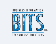 Business Information Technology Solutions