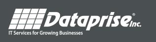 Dataprise logo