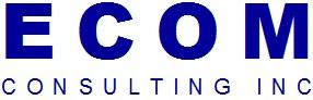 ECOM Consulting