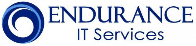 Endurance IT Services logo
