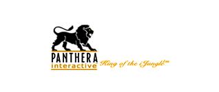 Panthera Interactive logo