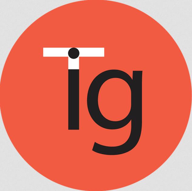 Terra Information Group logo