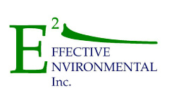 Effective Environmental