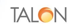 Talon Professional Services