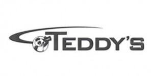 Teddy's Transportation System